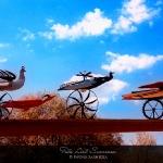 Ptaki Hasiora