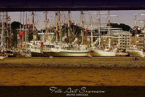 tall_ship_races_2013_20130806_1482163547